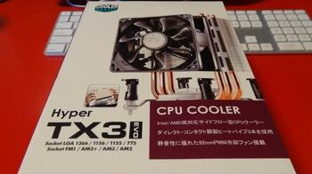 DSC00231 (800x450).jpg