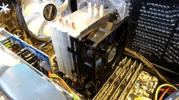 DSC00238 (800x450).jpg